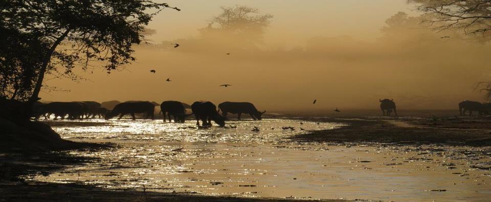 La imagen puede contener: cielo, océano, crepúsculo, exterior, naturaleza y agua